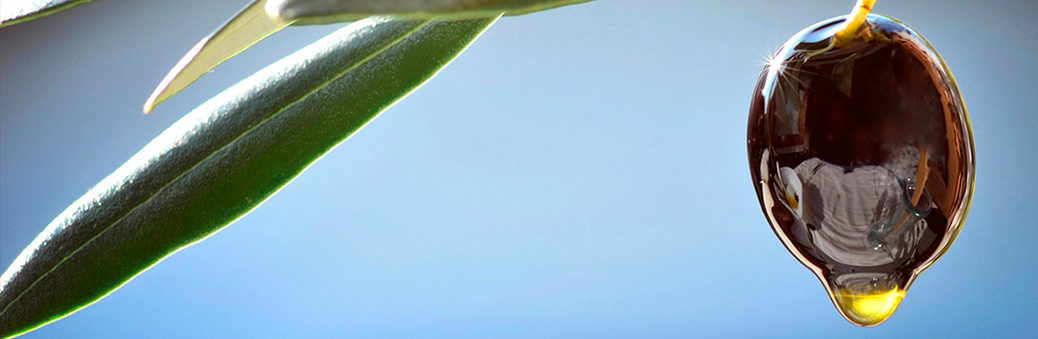 как делают оливковое масло