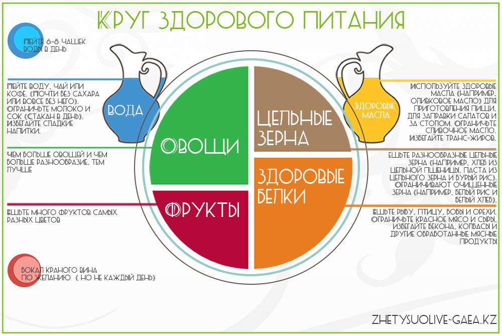 Круг схема правильного питания