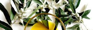 Как ароматизировать оливковое масло