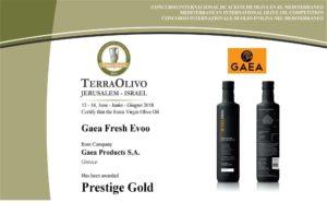 Уникальное оливковое масло Gaea Fresh